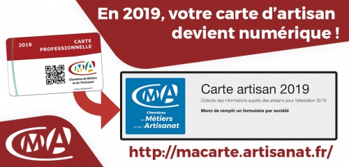 Carte professionnelle 2019